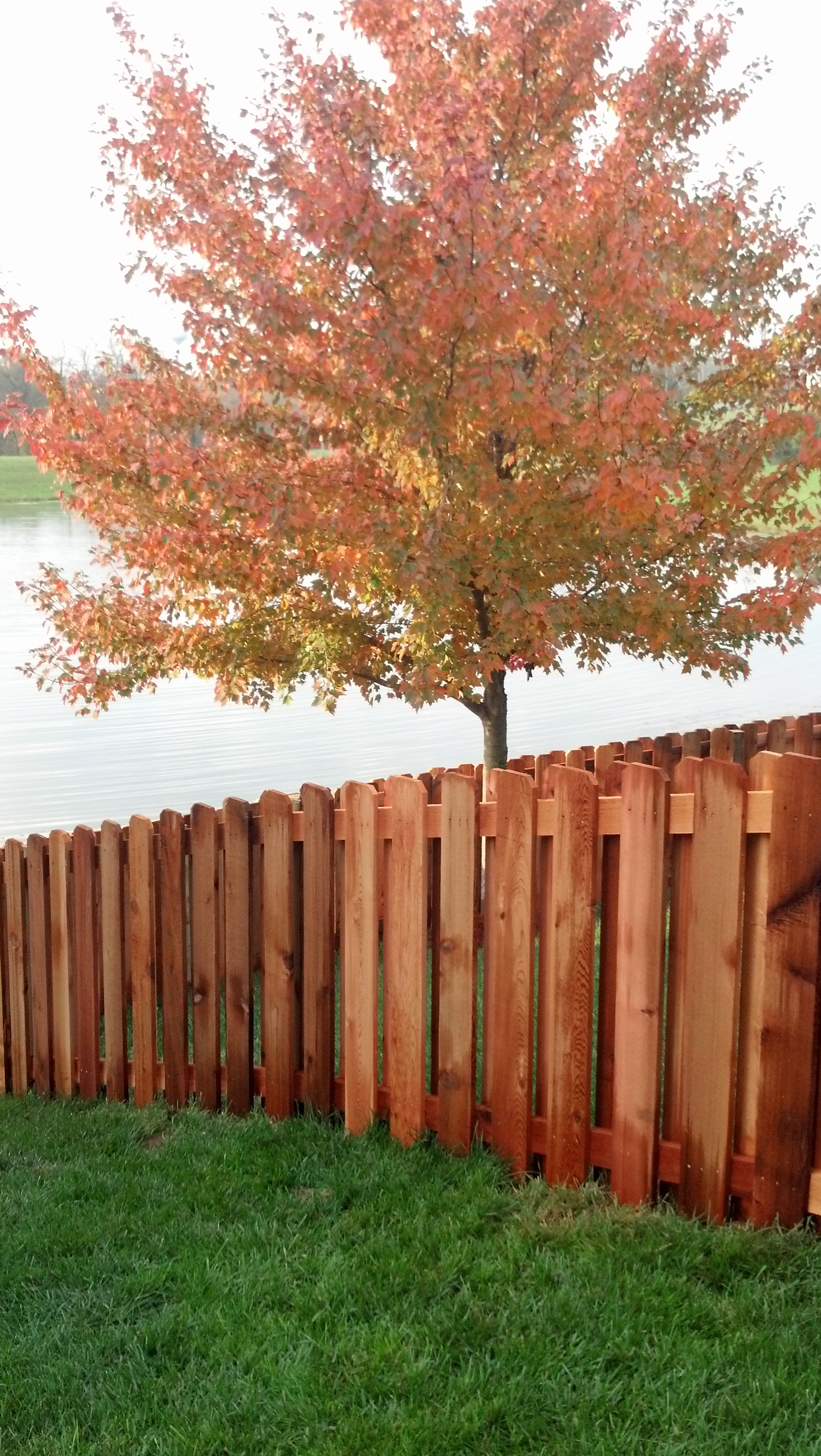 Residential Fence W Bar Y Fence Co Springfield Mo