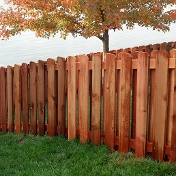 Shadowbox-wood sq