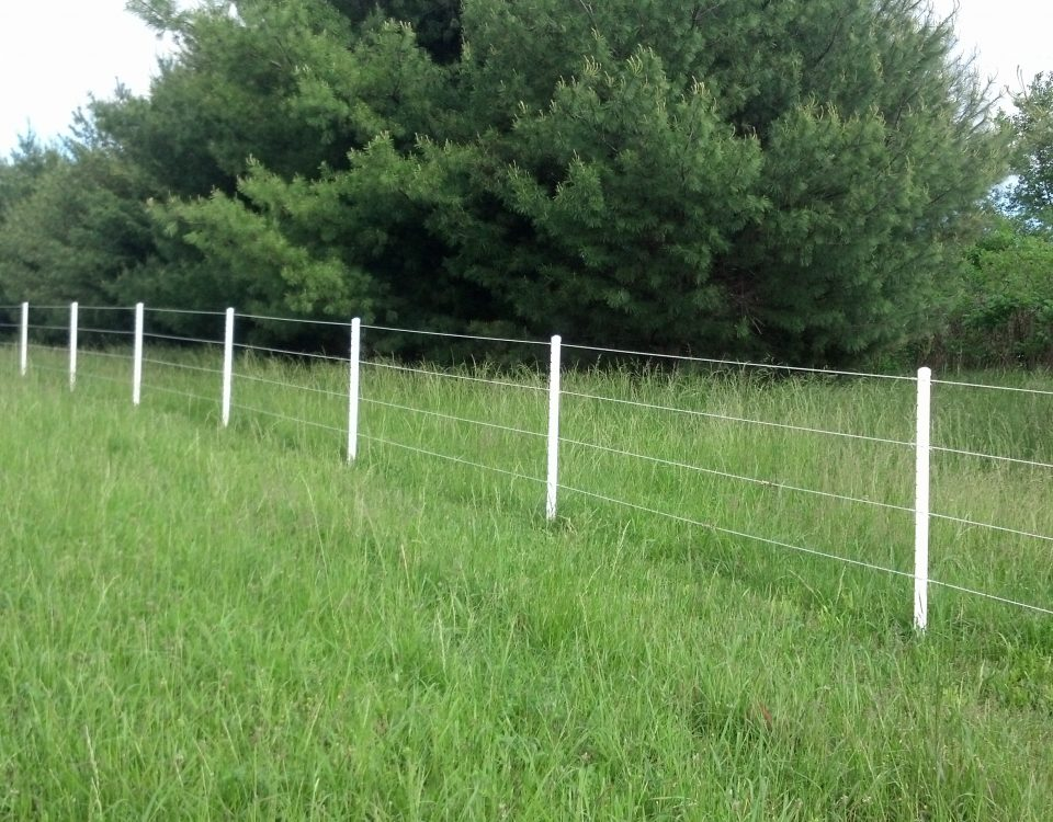 Electric Fence And Wire